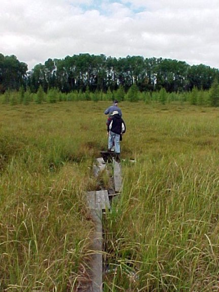 aug30-04-marsh-crossing-1