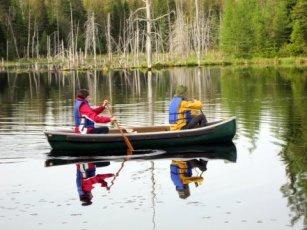 Exploring the beaver pond