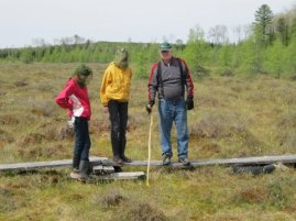 Peat studies in the fen